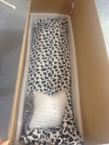 cushioned-packing